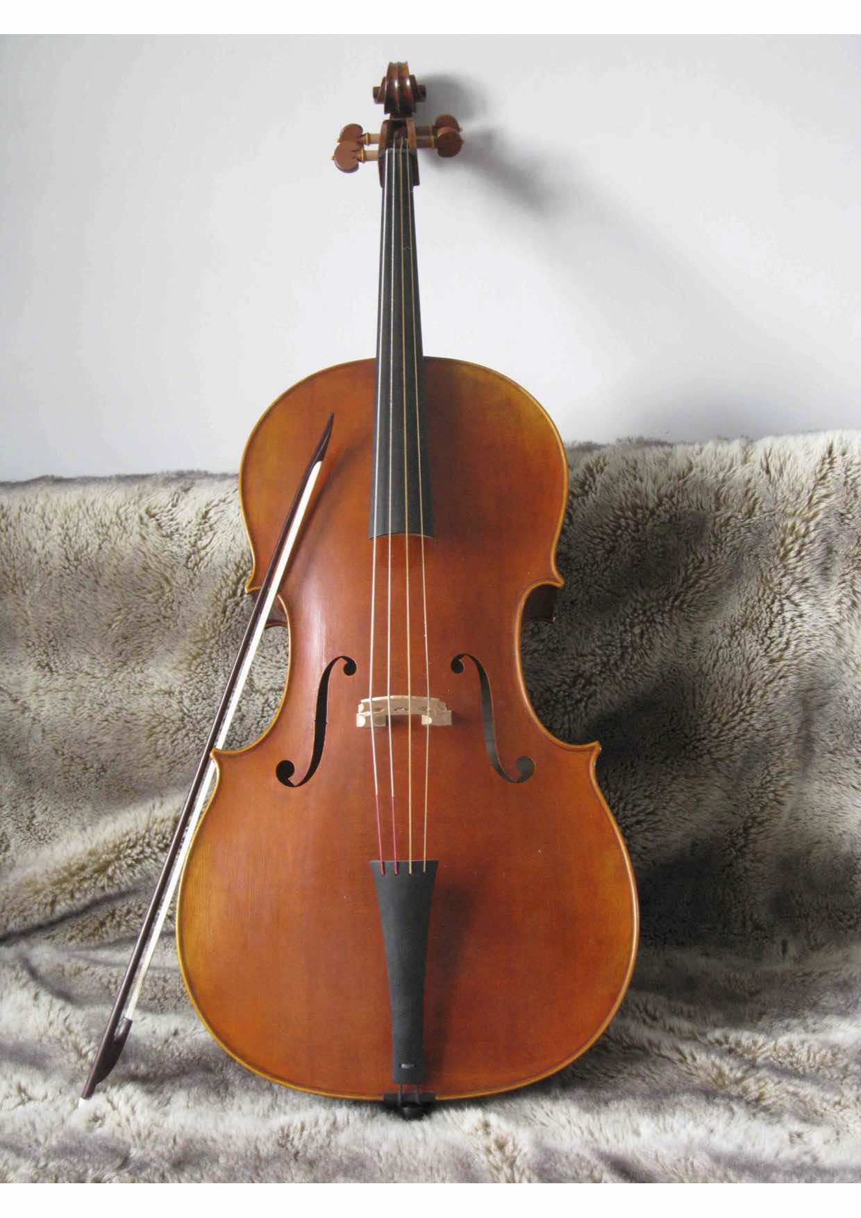 cello iesta2.jpg